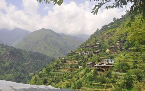 Himalaya Summer, India