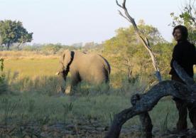 sam with elephant